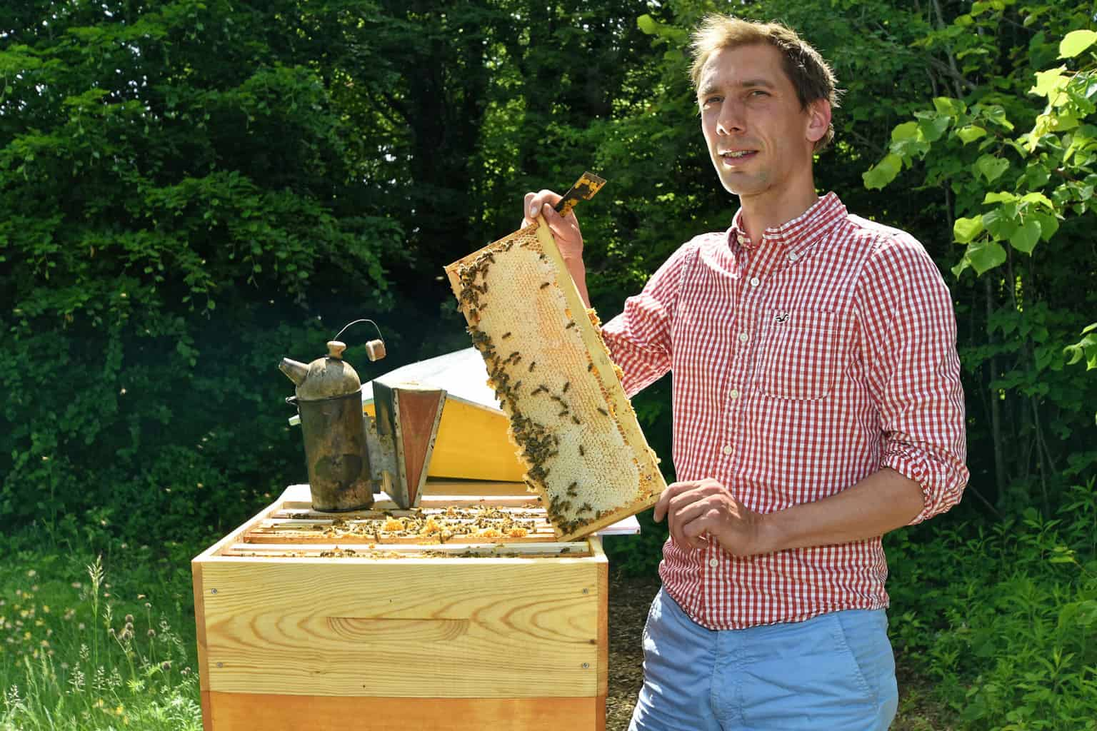 apiculteur yverdon